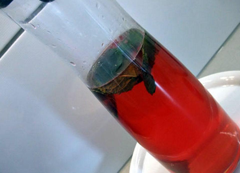 Himbeer-Limetten Wasser von thecookingknitter.com