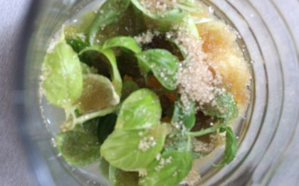 Basilikum -Zitronenlimonade