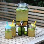 Limetten-Apfel-Limonade mit Ingwer